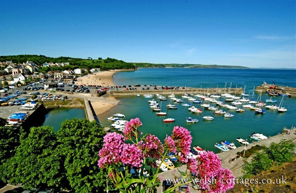 Photograph of 821-extra-saundersfoot-harbour
