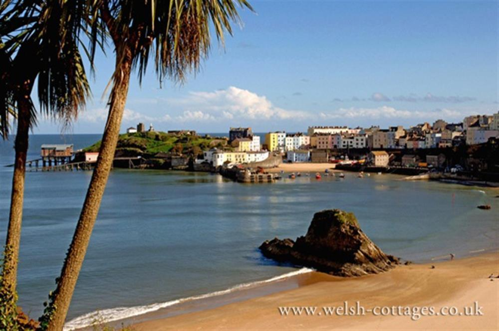 999-12-Tenby Harbour and North Beach (1)