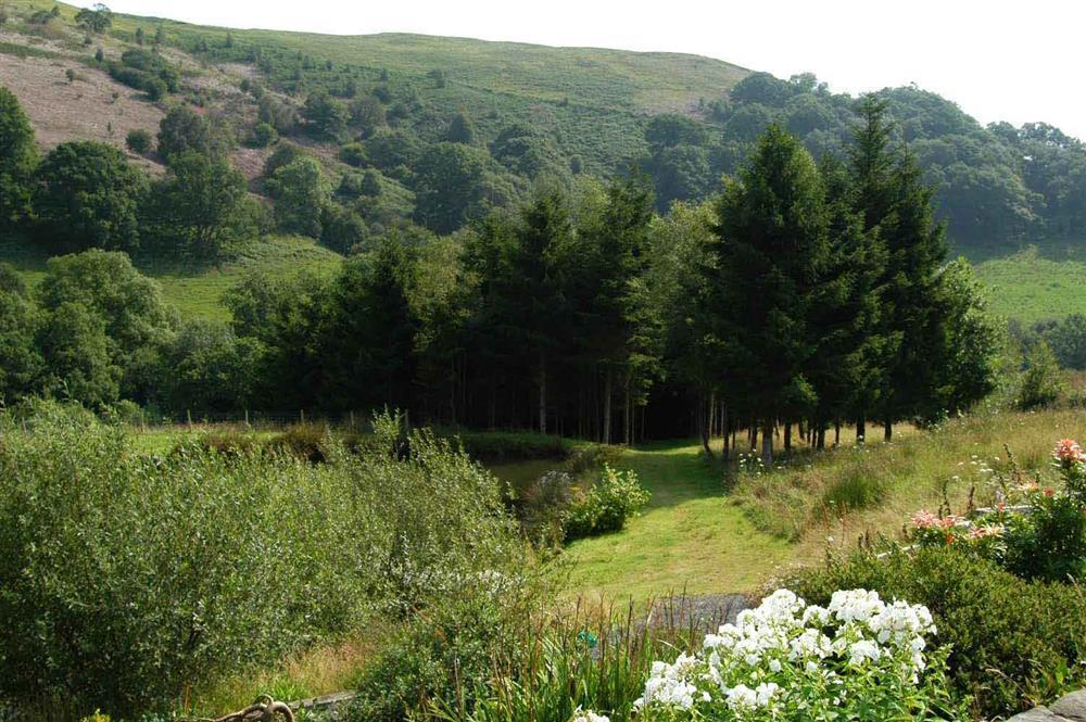 Photograph of 833-6-stunning grounds (5)