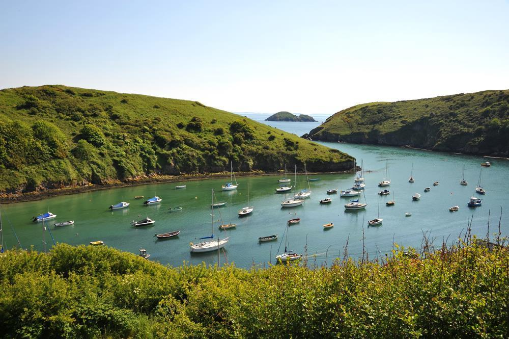 539-09-Local Area - Solva Harbour (3)