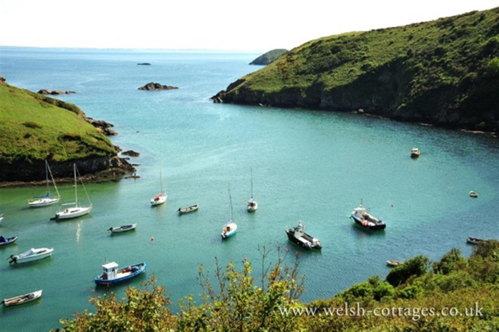 Photograph of 2131-solva harbour1