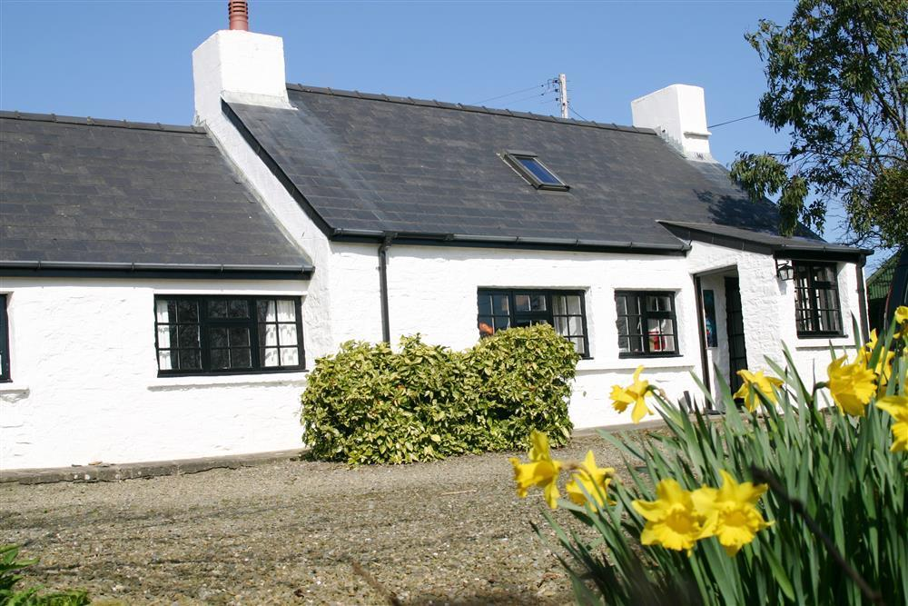 Cottage - near Newport Sands - Sleeps 5 - Ref 725