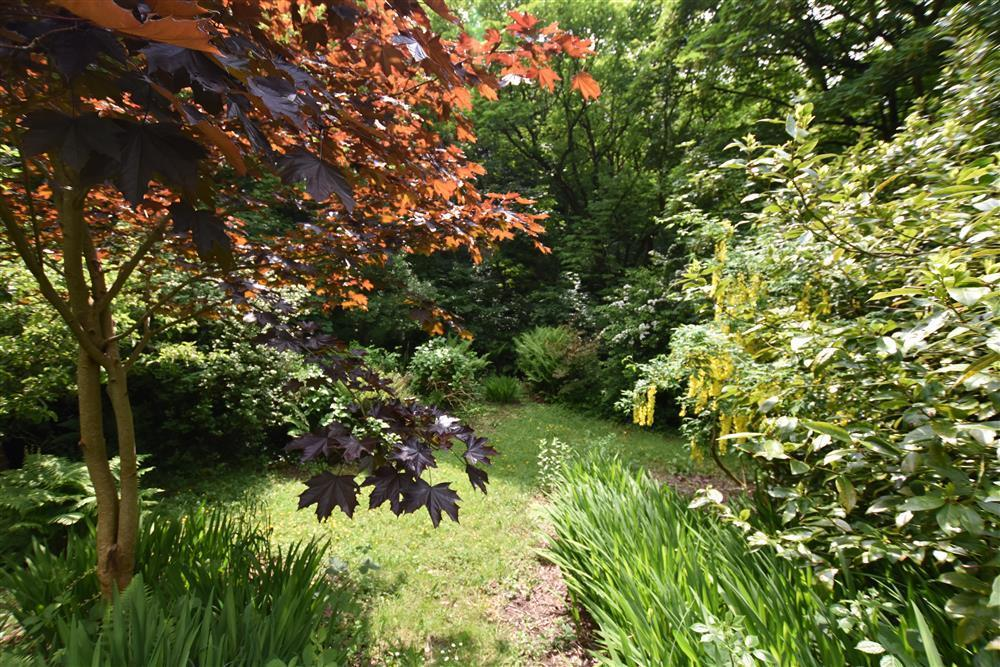 2243-8-steep garden areas (3)