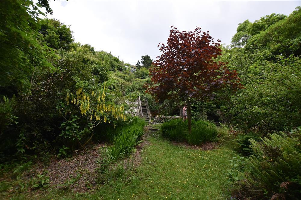2243-8-steep garden areas (4)