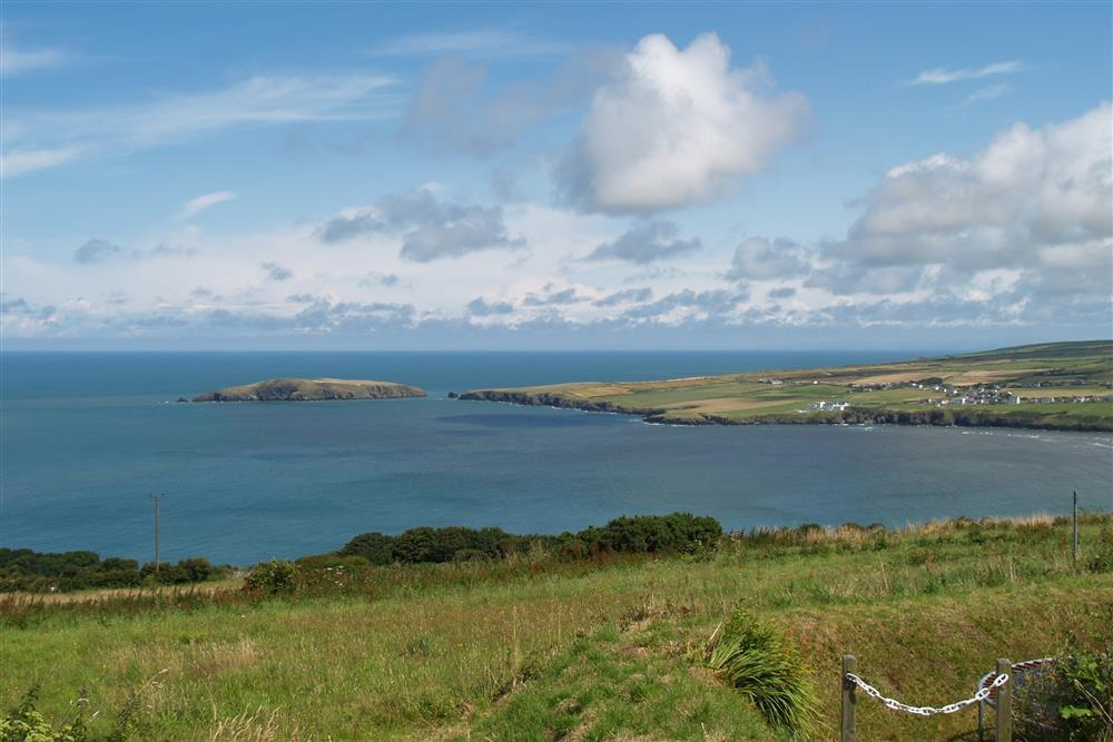 Photograph of 08-Cardigan Island - 2045