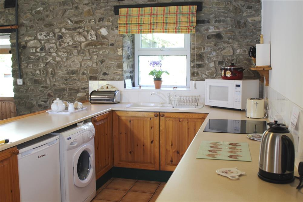 Photograph of 03-New Quay Cottage Kitchen- 751 (2)