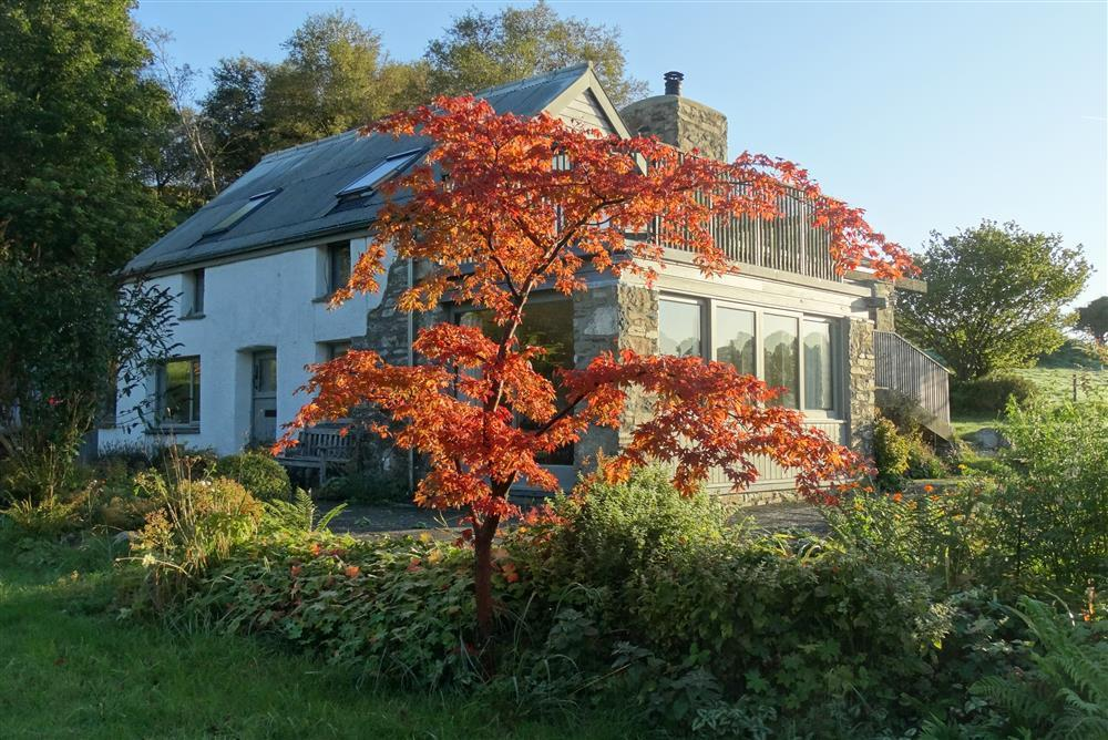 07 Secluded Pembrokeshire cottage 2250 (1)