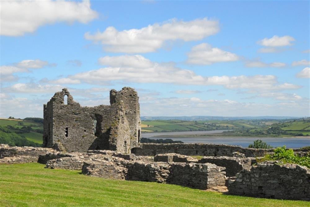 06-Local Area-Llansteffan Castle-939 (2)