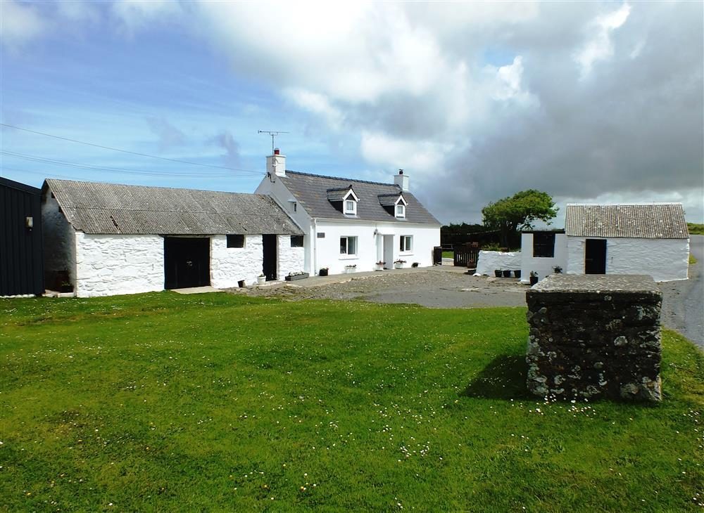 Pretty whitewashed near St Davids Pembrokeshire - Sleeps 4 - Ref 2135