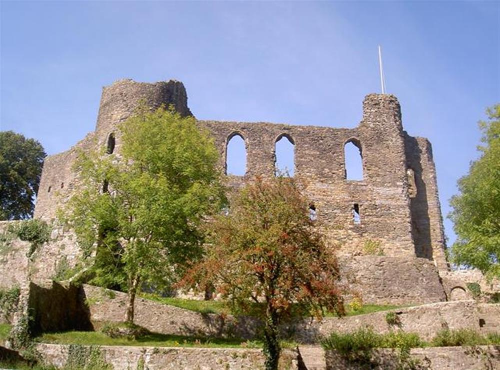 08 Haverfordwest Castle 593 (4)