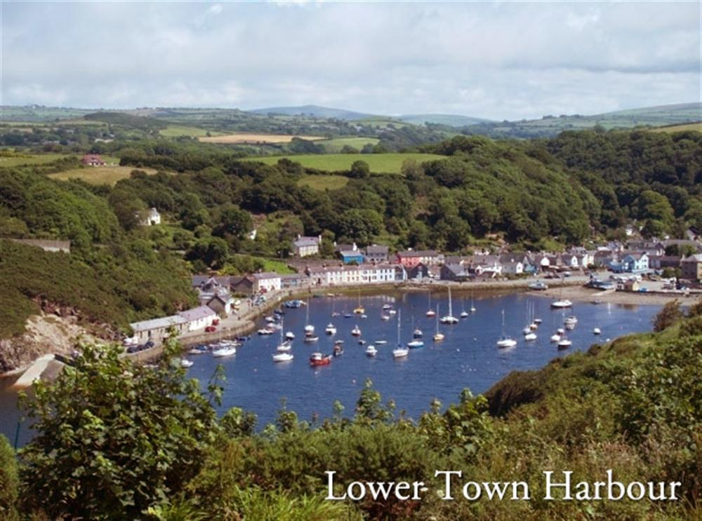 Photograph of 01-Lower Town Fishguard-151