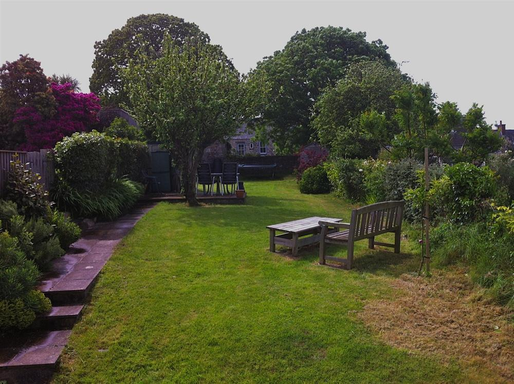 Photograph of 491-9-Back garden