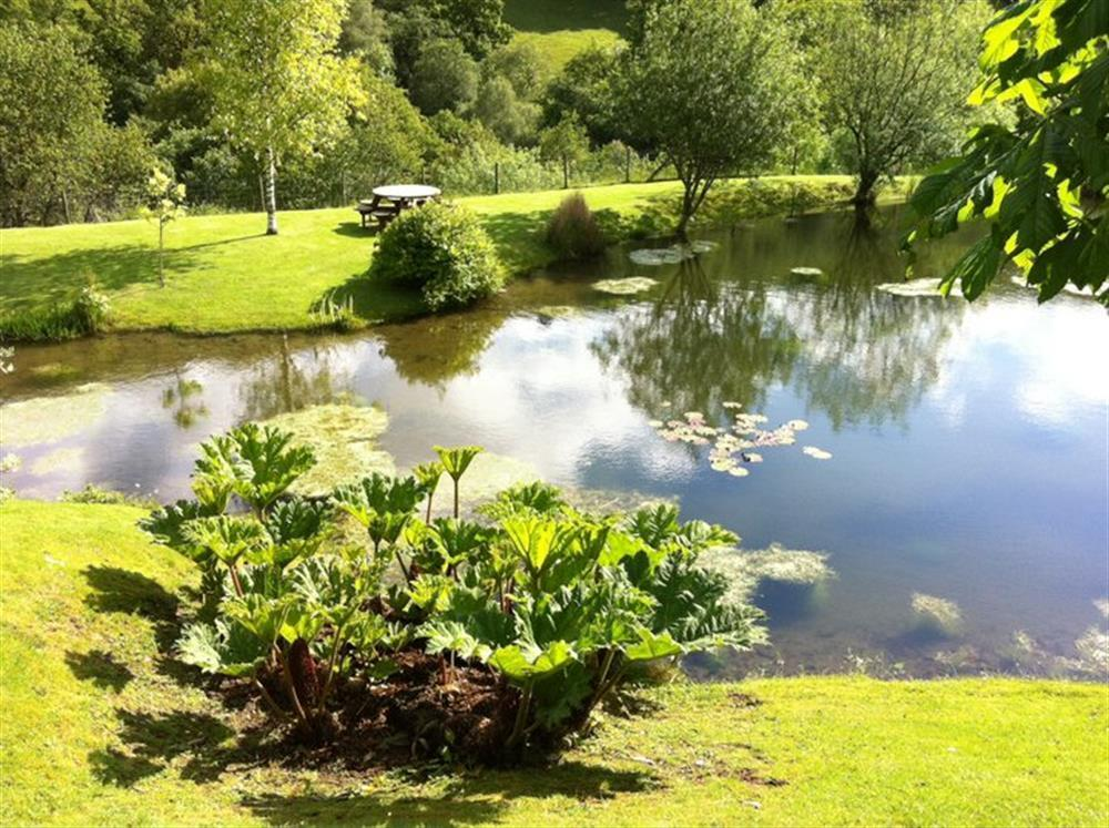 Photograph of 833-6-stunning grounds (2)