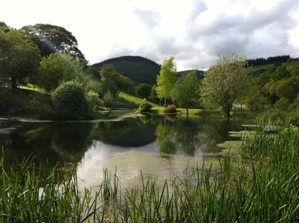 Photograph of 833-6-stunning grounds (4)