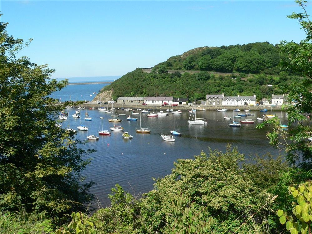Harbour View Apartment - Fishguard and Lower Town-Sleeps2-Ref2094