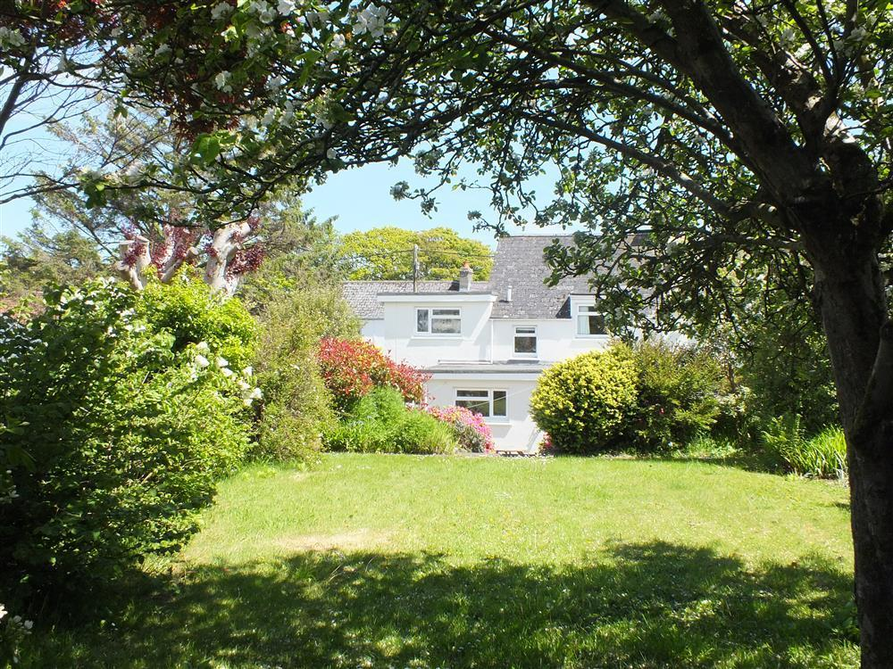 Large family holiday house on Lower St Mary's Street in Newport - Sleeps 8 - Ref 2100