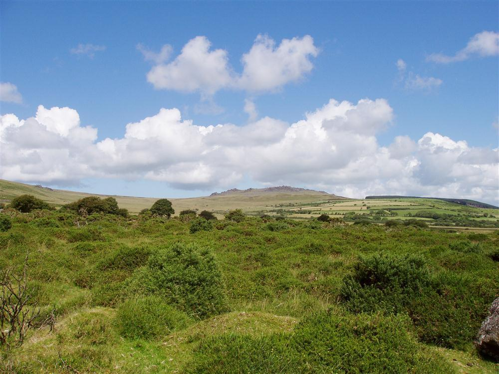 Photograph of 2034-extra-Preseli Hills