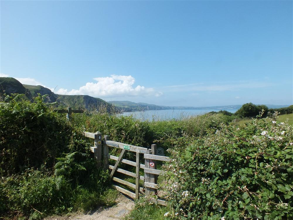 2141-1-coastal path at Pwllgwaelod