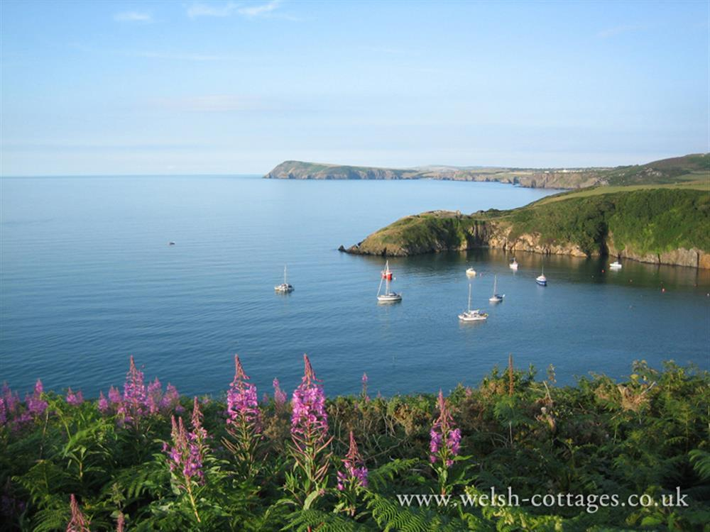 Photograph of fishguard bay