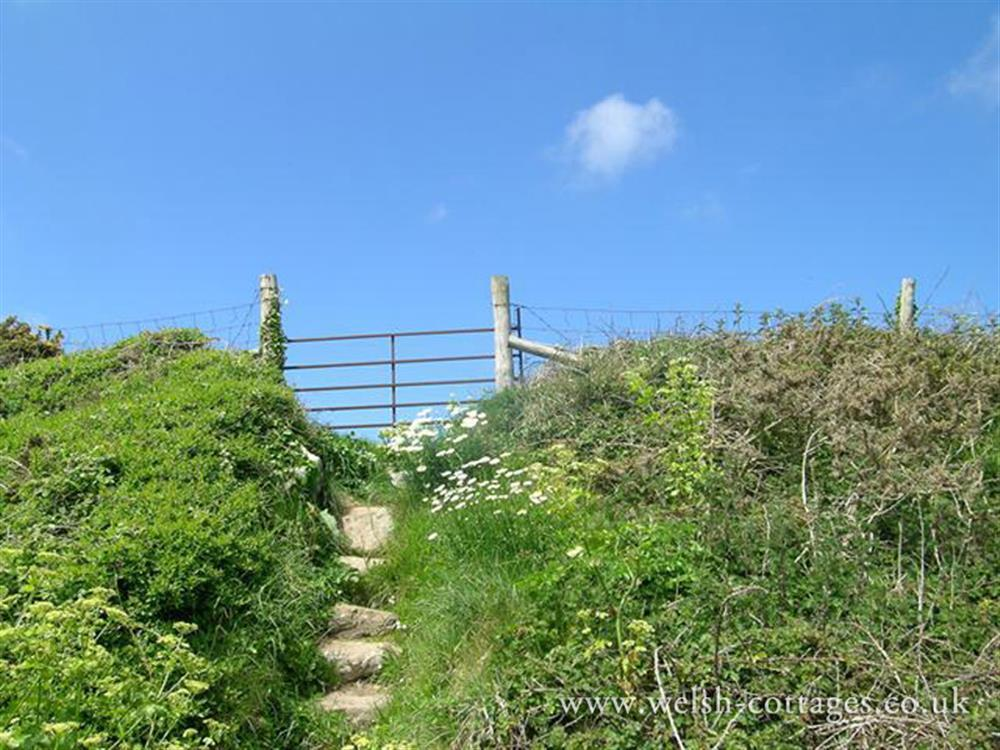 Photograph of Coastal path (2)