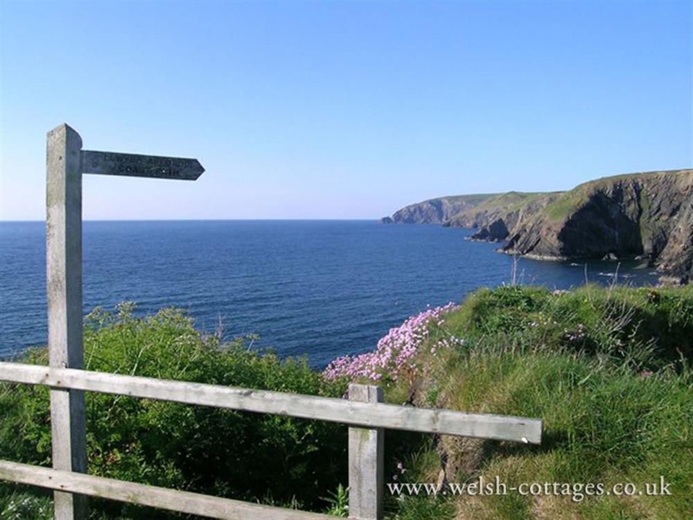 09-Newport and Ceibwr-101 (4)