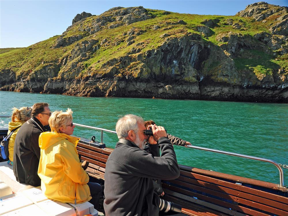 Photograph of 2078-9-Skomer Island Trips (3)