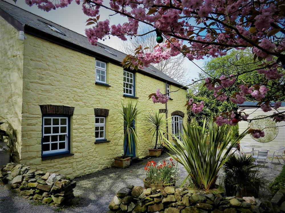 Pretty colour-washed upside down stone cottage on a quiet lane  Sleeps: 4  Property Ref: 2238