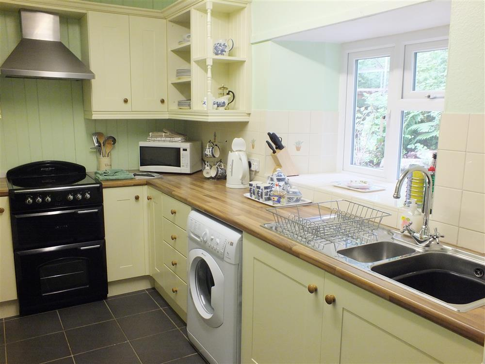 03 Panteg kitchen 516 (2)