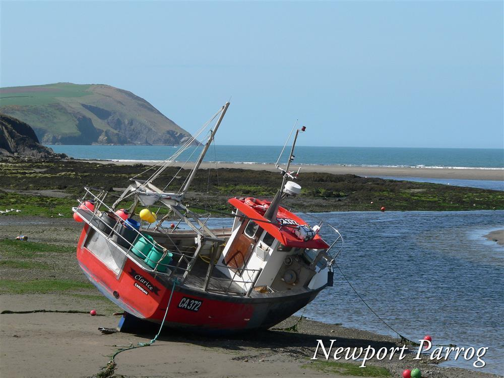 Photograph of 01 Newport Pembs 2111