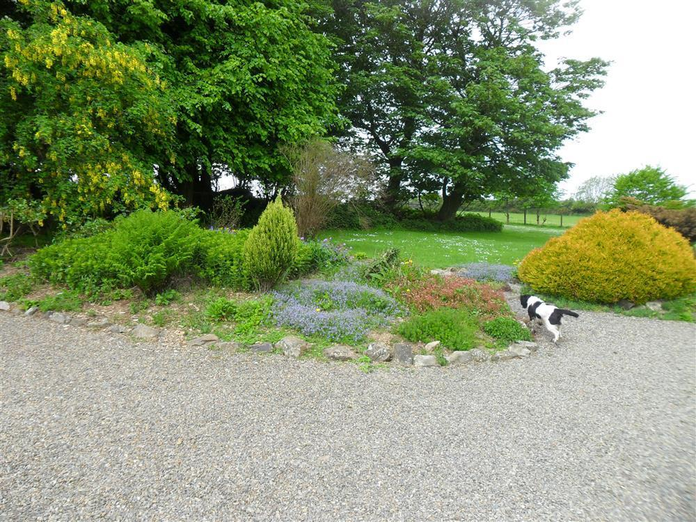 Photograph of 07 Hayscastle Farmhouse Grounds 593 (3)