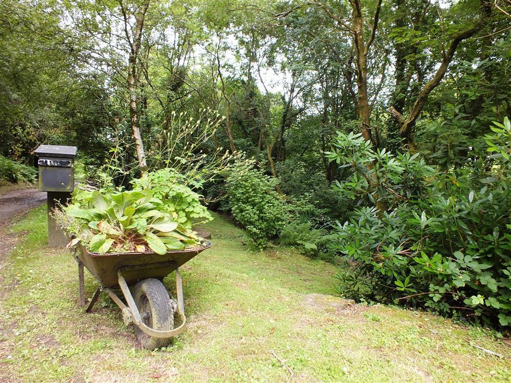 Photograph of 07 Gnol Byre grounds 2136 (5)