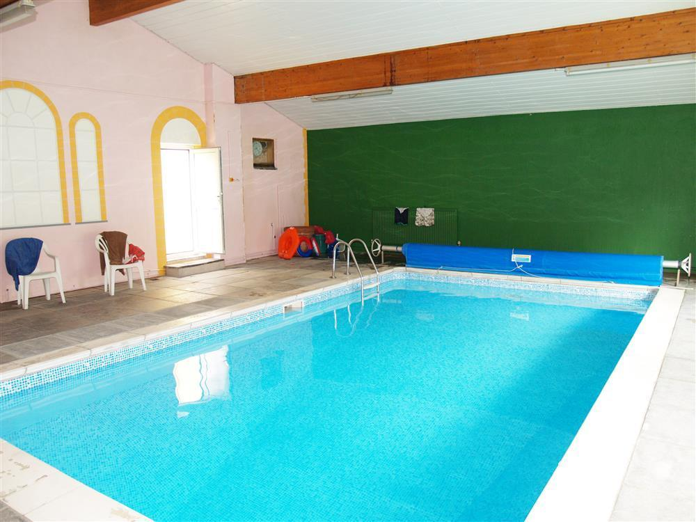 06-Narberth Cottage Pool-651 (1)