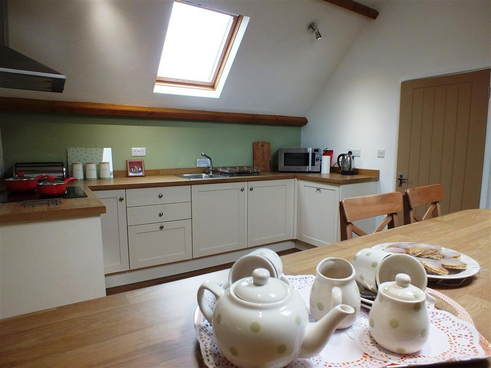 Photograph of 03 Kitchen New Quay Cottage 2174 (2)
