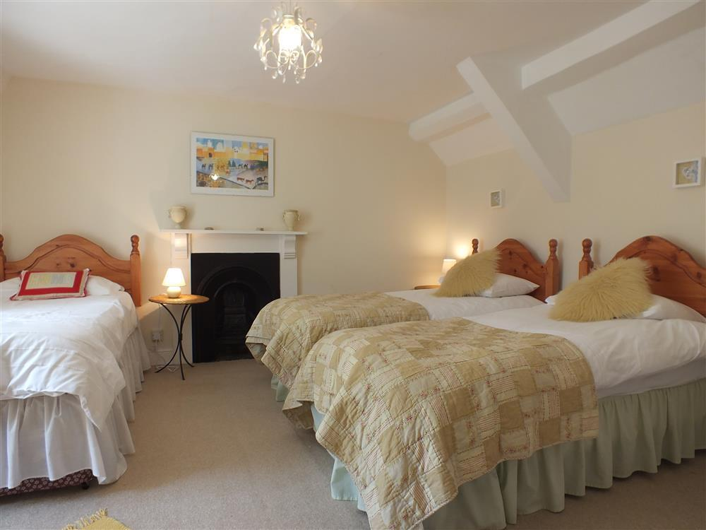 06-Single bed in Fishguard-707 (4)