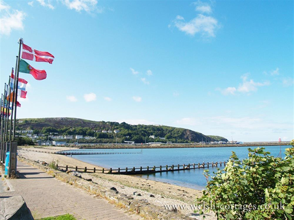 Photograph of 09 Goodwick Beach 538
