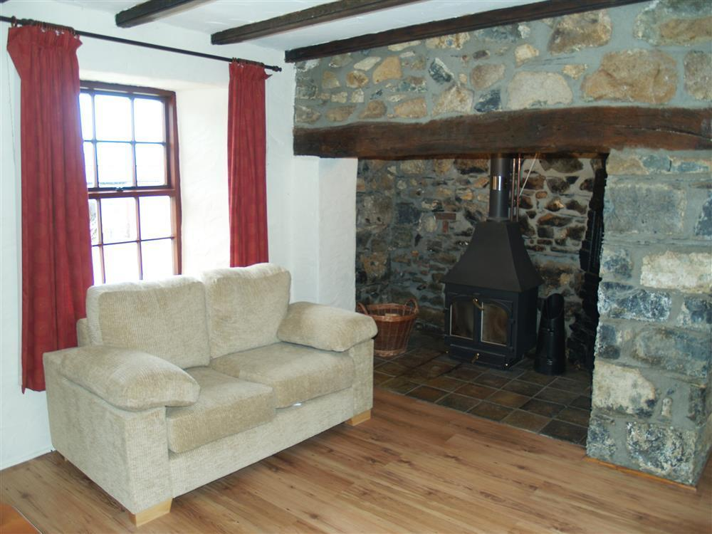 Photograph of 03-Newport Cottage Woodburner-731 (1)
