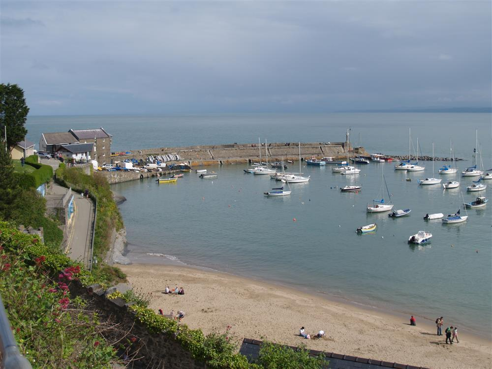 Photograph of 08-Local Area-New Quay-751 (2)
