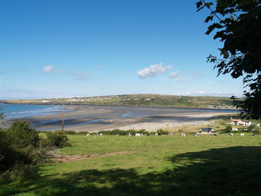 09-Local Area-Poppit Sands-816 (1)