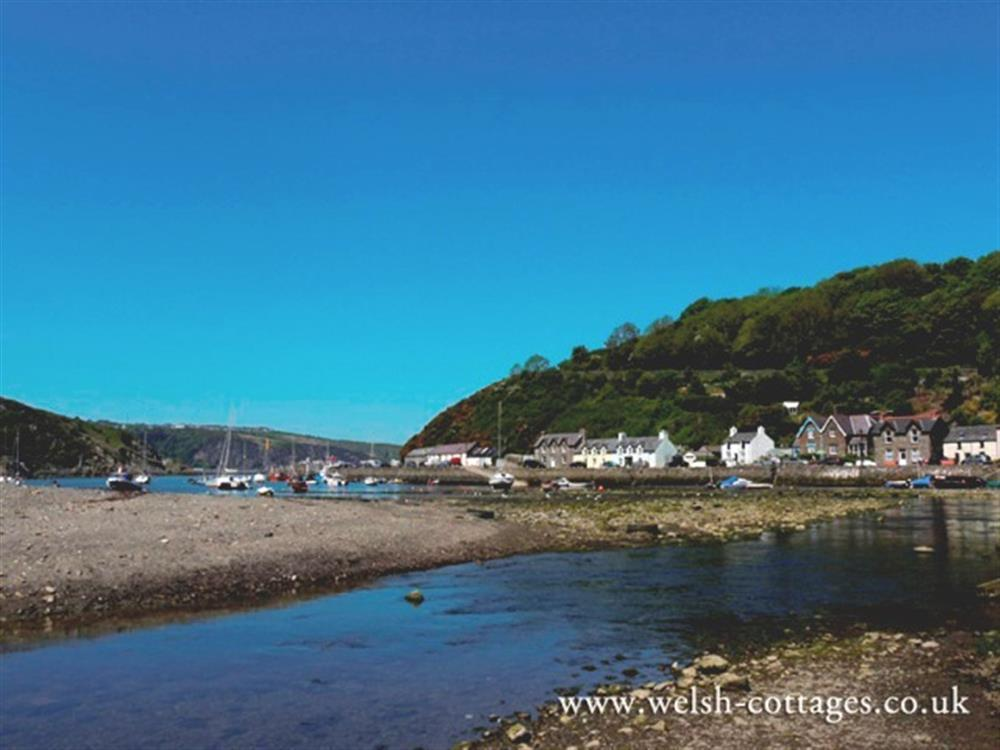 06-Lower Town Fishguard-933 (4)