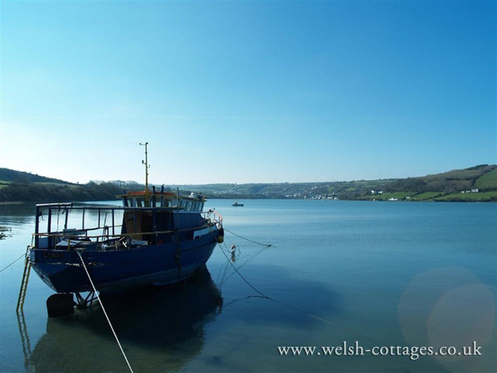 07-Gwbert Patch Teifi-903