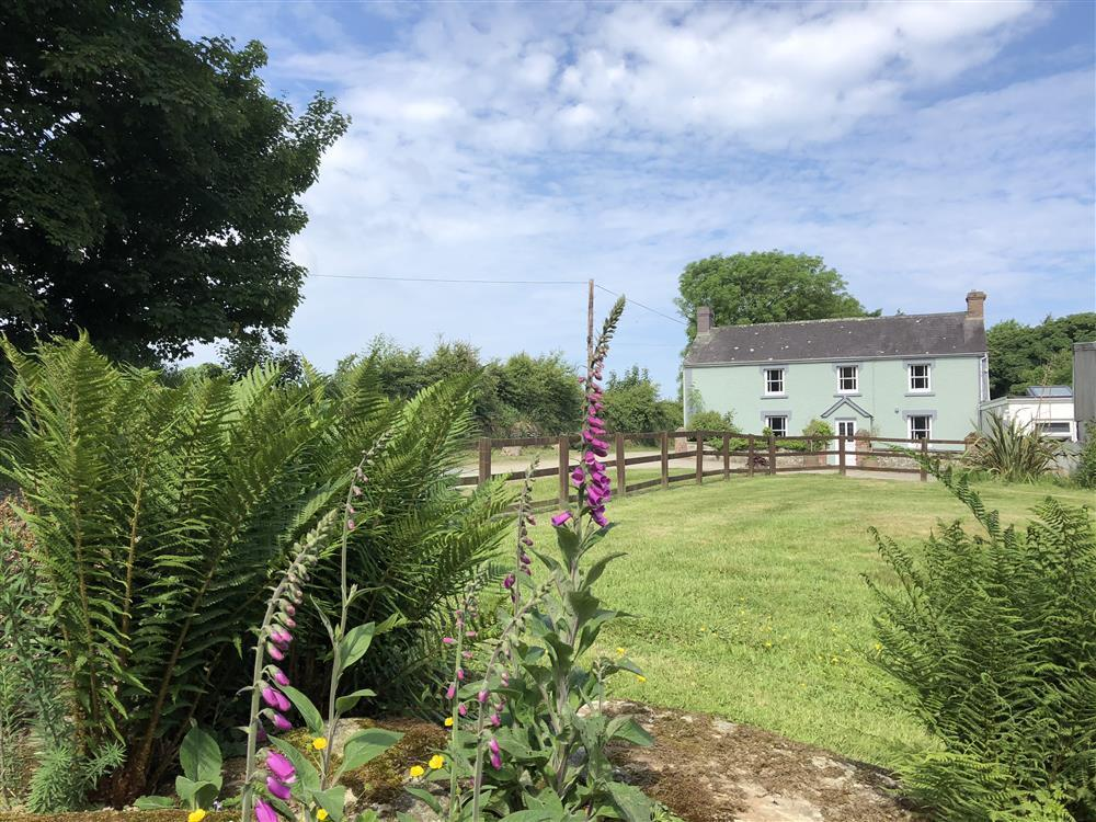 Spacious detached Farmhouse near Newport Sands and Ceibwr Bay  Sleeps: 8  Property Ref: 101