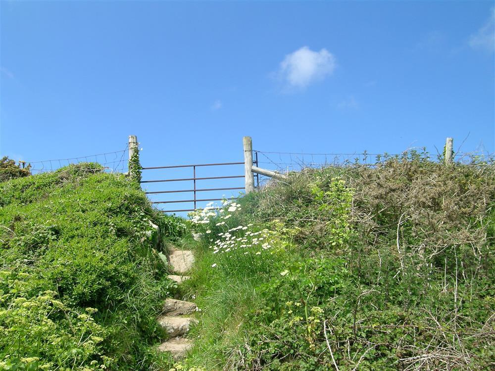09 St Davids Coast Path 2191 (1)