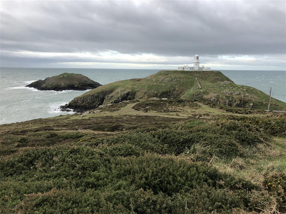 Photograph of 07-Local Area-Strumble Head-710 (1)