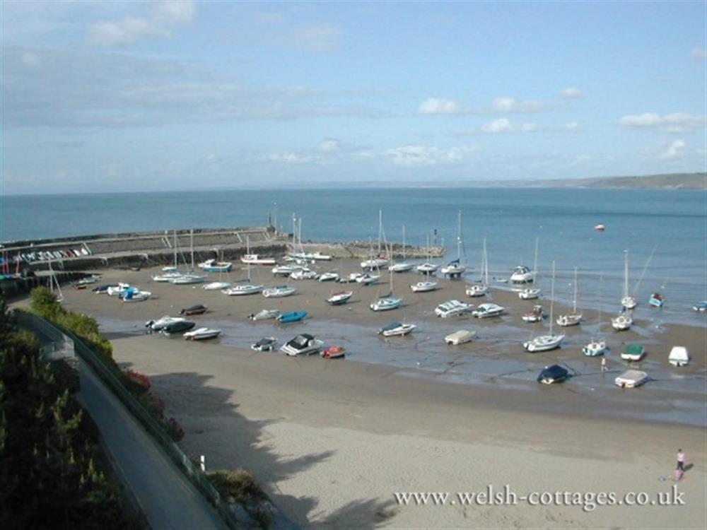 08 New Quay Cardigan Bay 2174 (1)