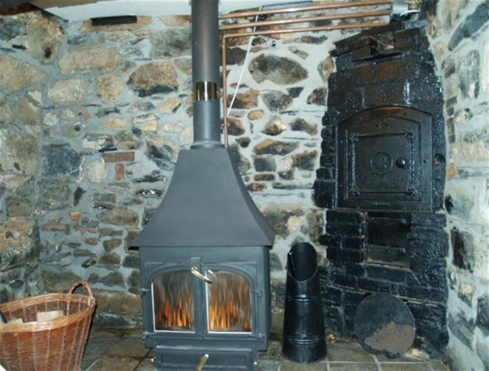 Photograph of 03-Newport Cottage Woodburner-731 (2)